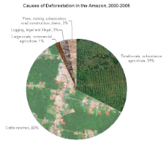 Causes of deforestation in the Amazon 2000-2005 - Mongabay.com