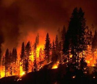 washington wildfire