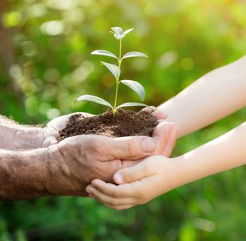 37598665 - senior man and baby holding young plant in hands against spring green background. earth day concept